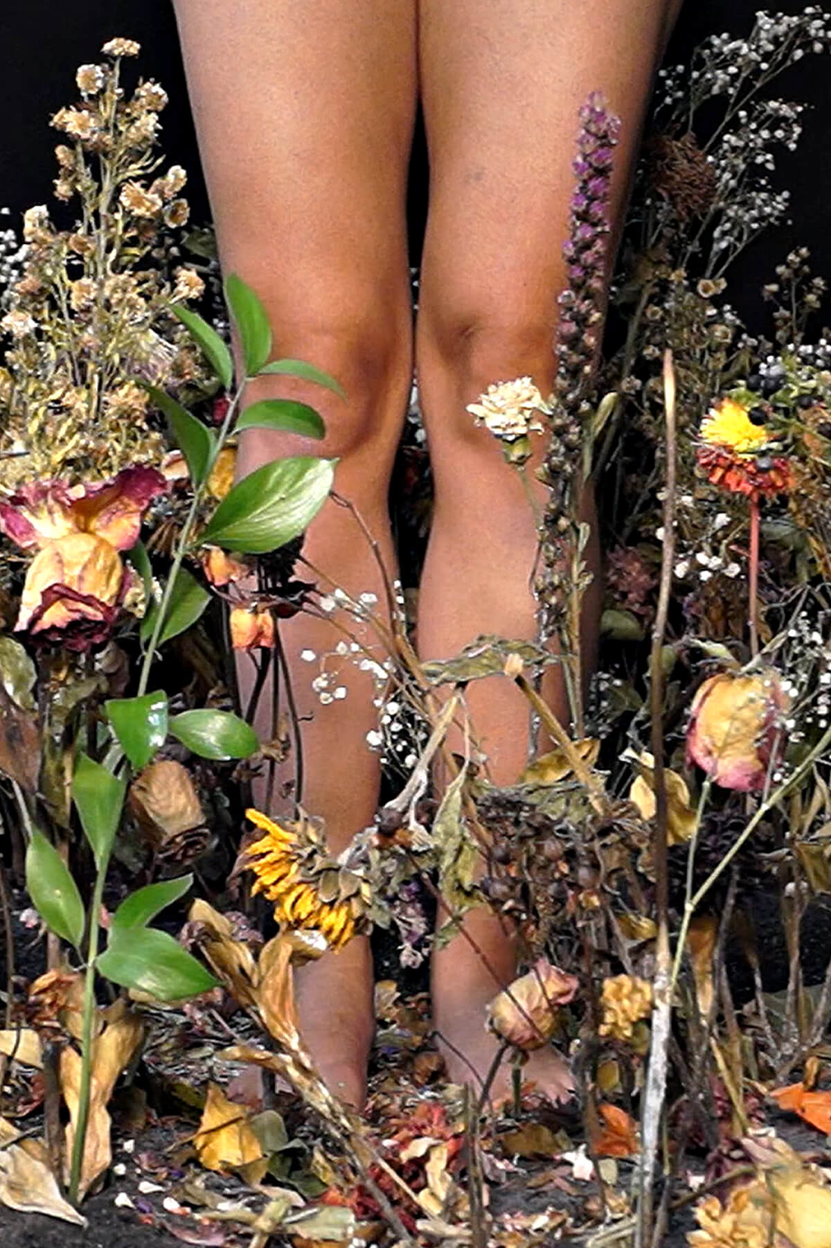 A photograph of a young barefoot woman's legs with a garden of dead flowers in the foreground.