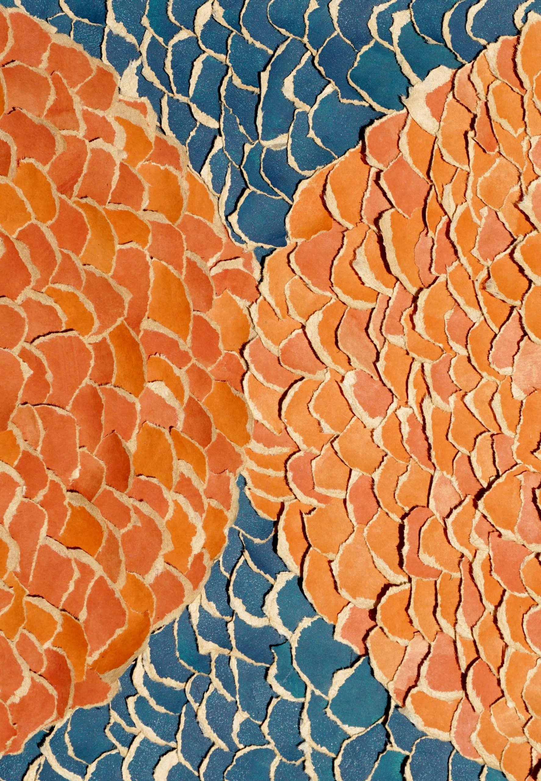 An abstract torn paper collage - orange paper torn into small circles is arranged to resemble fish scales, forming two semi-circles that meet in the center. Blue torn paper circles fill the gap behind the orange.
