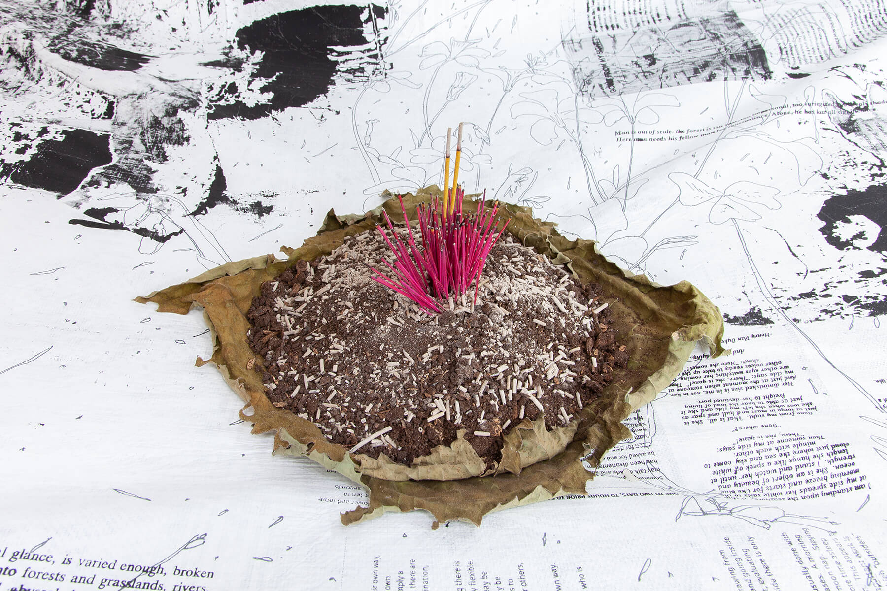 A horizontally-oriented color photograph of a large pile of ashes with burned incense sticks at the center. In the background of the image are black and white writings and drawings.